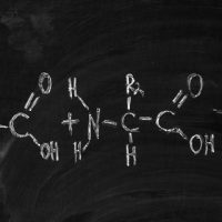 How many amino acids are there?