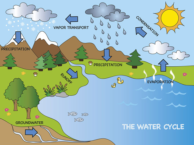 Answering the questions, what is the water cycle and why is the water cycle important?